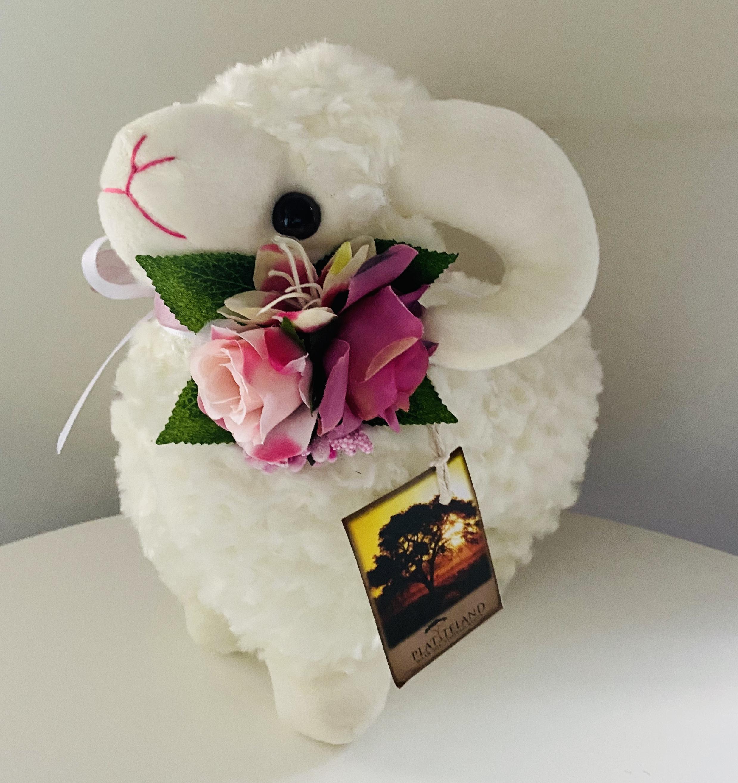 sheep-white-